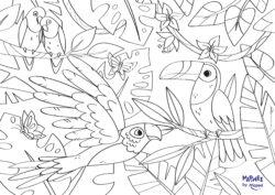 Coloriage perroquets et toucans - cahier de jeux et coloriages sur les animaux à imprimer gratuitement